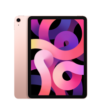 iPad Air 10.9-Inch with Wi-Fi - 64GB